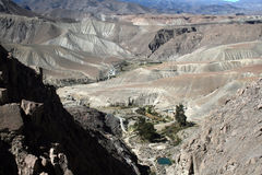 Andean chile Stock Images