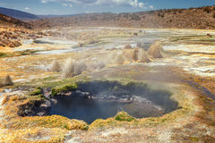 Andean geysers the Junthuma, formed by geothermal activity, Bolivia. Andean geysers the Junthuma, formed by geothermal activity, Sajama National Park, Bolivia Royalty Free Stock Photos