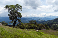 Andean landscape Stock Photography