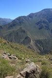 Andean Landscape in Peru Royalty Free Stock Image