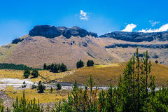 Andean landscape south america Royalty Free Stock Images