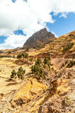 Andean Landscape Vertical Royalty Free Stock Photos