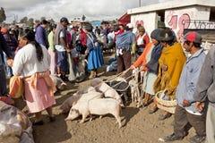 Andean market Saquisilí Royalty Free Stock Photography