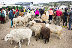 Andean market Saquisili Stock Photo