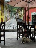 Andean stad Alausi, Chimborazo landskap, Ecuador royaltyfri foto