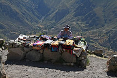 Andean stall Stock Image