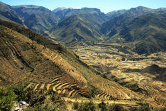 Andean terraces Royalty Free Stock Photo