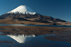 Andean volcano Parinacota Stock Images
