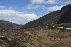 Andean wilderness. Stock Photography