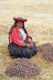 Andean woman Royalty Free Stock Photography