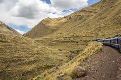 AndeanExplorer Zdjęcia Stock
