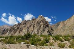 Anden-Berge in Argentinien Stockbild