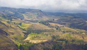 Anden in Ecuador Lizenzfreie Stockfotografie