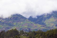Anden in Ecuador Stockfotos