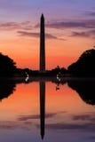 Anden simmar på soluppgång på en lugna morgon på den reflekterande pölen, Washington Monument, DC med reflexionen av gränsmärket  Royaltyfri Foto