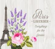 Andenkenkarte mit Eiffelturm Stockbild