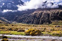 Andenlandschaft nahe Riobamba, Ecuador lizenzfreie stockfotografie