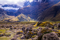 Andenlandschaft nahe Riobamba, Ecuador lizenzfreie stockbilder