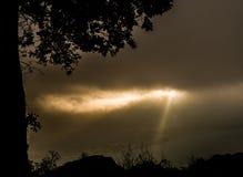Andere mening voor zonsopgang Stock Foto's