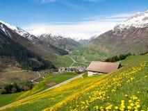 Andermatt, Weiden und Berge Stockfotografie