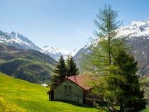 Andermatt, Weiden und Berge Stockbilder