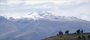 The Andes. A kind on snow top of Stock Image
