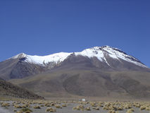 Andes Stock Images