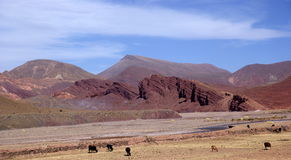 Andes and atacama desert, Uyuni, Bolivia Stock Photography