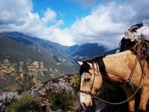 Andes Stock Image
