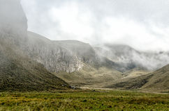 The Andes in Ecuador. At 4.000,00 meters Royalty Free Stock Photos