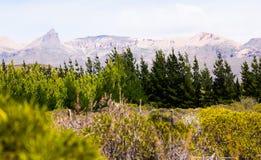 Andes góry na granicie z Chile, Los Antiguos zdjęcie stock