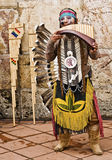 Andes Indische Musicus Royalty-vrije Stock Afbeelding