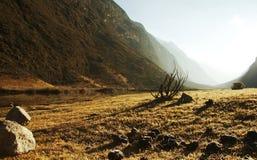 Andes landscape Stock Image