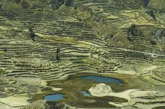 Andes Landscape In Peru Royalty Free Stock Image