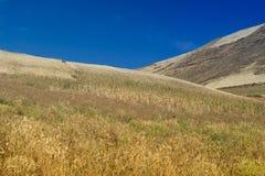 Andes landschap Stock Afbeelding