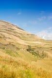 Andes landschap Royalty-vrije Stock Afbeelding