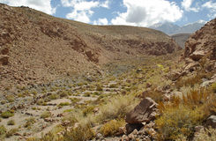 Andes Mountains, Chile Stock Images