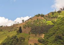 Aerial View Of Farming Terraces. In Ecuador, South America Royalty Free Stock Photo