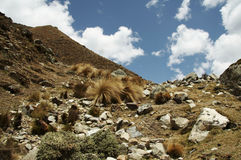Andes in the Peru Royalty Free Stock Photography