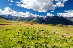 The Andes in Peru. Near the city of Cusco Royalty Free Stock Photos