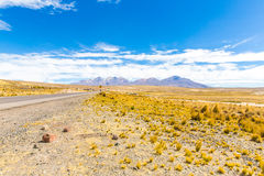The Andes, Road Cusco- Puno, Peru,South America. 4910 m above. The longest continental mountain range in the world Royalty Free Stock Photography