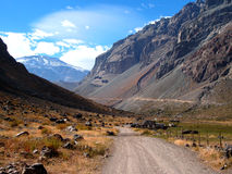 Andes road Stock Images