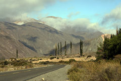 Road 51 in Salta province, Argentina Royalty Free Stock Photo