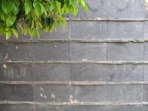 Andesit-Mähdrescher mit Candi Stone Stockfotos