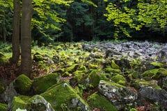 Andesite stone sea in Slovak republic Stock Photography