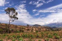 Andesuitzicht 1 Royalty-vrije Stock Afbeelding