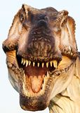 Andeutende Rekonstruktion von Tyrannosaurus rex Lizenzfreies Stockfoto
