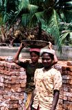 Andhra Pradesh, India, circa Augustus 2002: De vrouwelijke werknemers dragen bakstenen stock fotografie