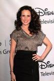 Andie MacDowell en el ABC de Disney   Fotografía de archivo libre de regalías