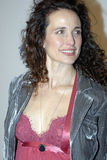 Andie MacDowell on the red carpet Stock Photography